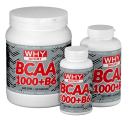 BCAA 1000+B6