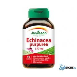 Echinacea Purpurea Jamieson