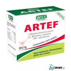 Artef - WHYnature