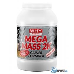 Mega Mass 2k